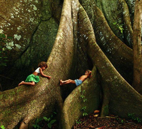 amazonas-apino-turismo