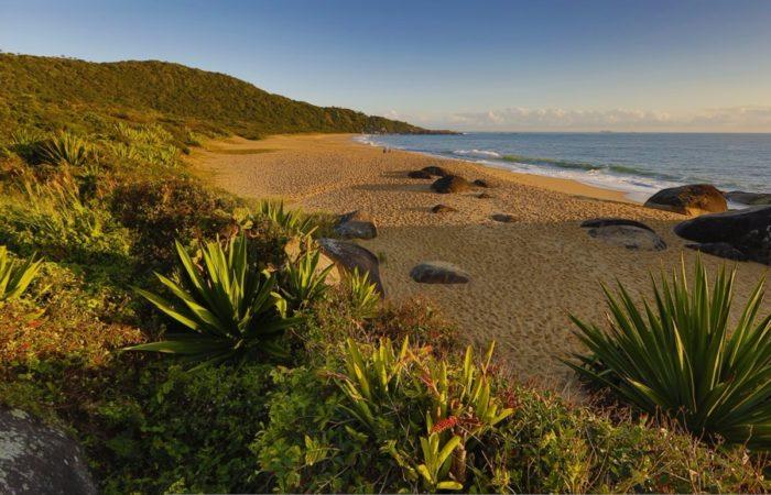 praia_amores-apino-viagens-turismo-balneario-camboriu